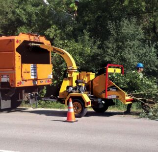 Commercial Tree Services-San Marcos CA Tree Trimming and Stump Grinding Services-We Offer Tree Trimming Services, Tree Removal, Tree Pruning, Tree Cutting, Residential and Commercial Tree Trimming Services, Storm Damage, Emergency Tree Removal, Land Clearing, Tree Companies, Tree Care Service, Stump Grinding, and we're the Best Tree Trimming Company Near You Guaranteed!