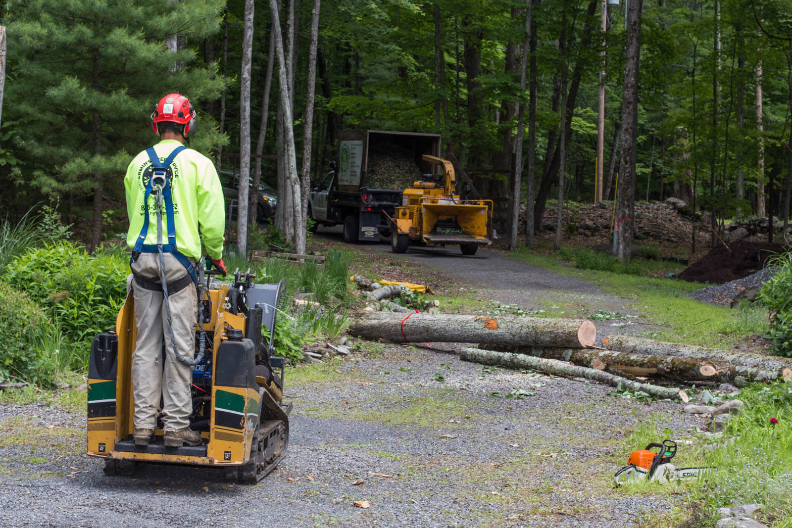 Emergency Tree Removal-San Marcos CA Tree Trimming and Stump Grinding Services-We Offer Tree Trimming Services, Tree Removal, Tree Pruning, Tree Cutting, Residential and Commercial Tree Trimming Services, Storm Damage, Emergency Tree Removal, Land Clearing, Tree Companies, Tree Care Service, Stump Grinding, and we're the Best Tree Trimming Company Near You Guaranteed!