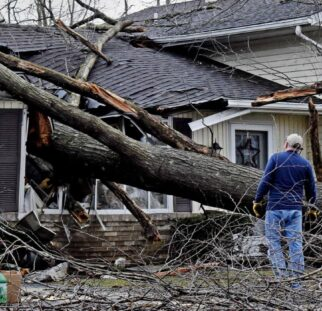 Storm Damage-San Marcos CA Tree Trimming and Stump Grinding Services-We Offer Tree Trimming Services, Tree Removal, Tree Pruning, Tree Cutting, Residential and Commercial Tree Trimming Services, Storm Damage, Emergency Tree Removal, Land Clearing, Tree Companies, Tree Care Service, Stump Grinding, and we're the Best Tree Trimming Company Near You Guaranteed!